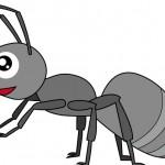 蚊・ダニの次は、「ヤツ」が来る!